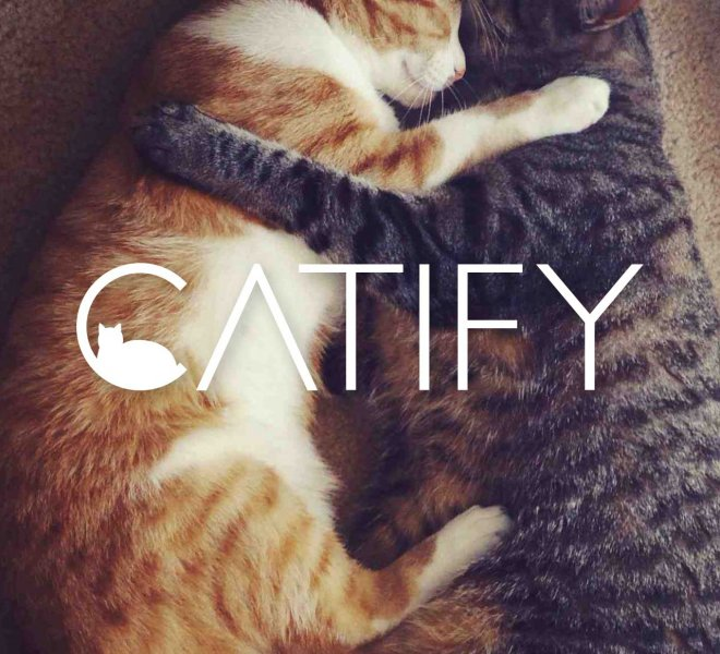 catchydesign-catify-hug